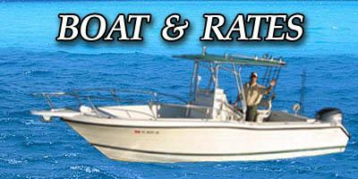 Capt brook wallace bradenton fishing charters anna for Longboat key fishing charters